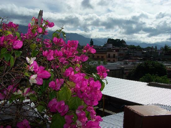Hotel Casa del Sotano: vue