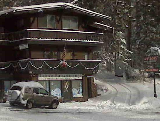 Pine Cone Resort: Does it get any cuter & fun?! And they have a friendly wild black bear living nearby