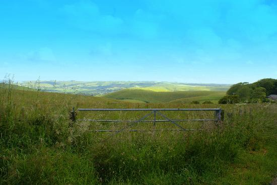 Top Parts Bed and Breakfast: the view from the lane leading to B/B