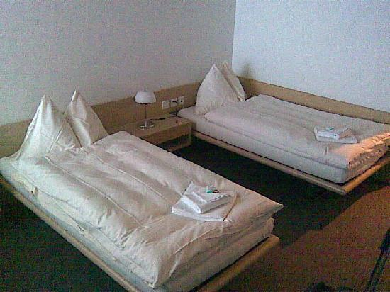 Swiss Olympic House Hotel Magglingen: Two Single Beds