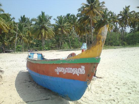 The Beach at Pollethai: photo from the beach