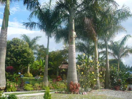 Finca Hotel La Manuela : Jardines