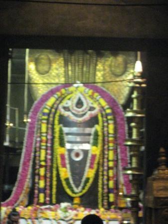 Thanjavur, India: Черный Шивалингам Брихадишвара    высотой 3.5 метра,   олицетворяет Господа Шиву.