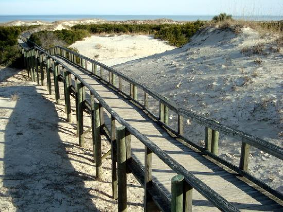 ‪‪Cumberland Island National Seashore‬: access to beach‬