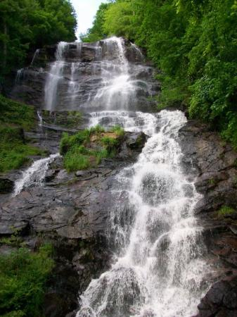 Amicalola Falls State Park 사진