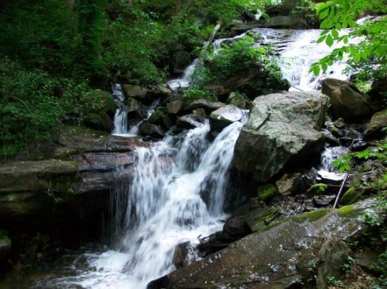 Amicalola Falls State Park 사진