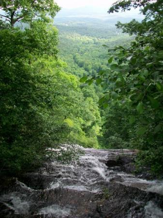 Amicalola Falls State Park: And what a view from the top!