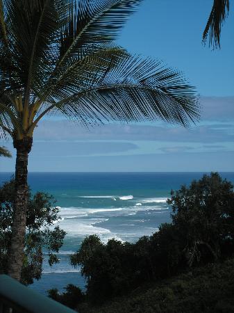 Westin Princeville Ocean Resort Villas : View from my balcony