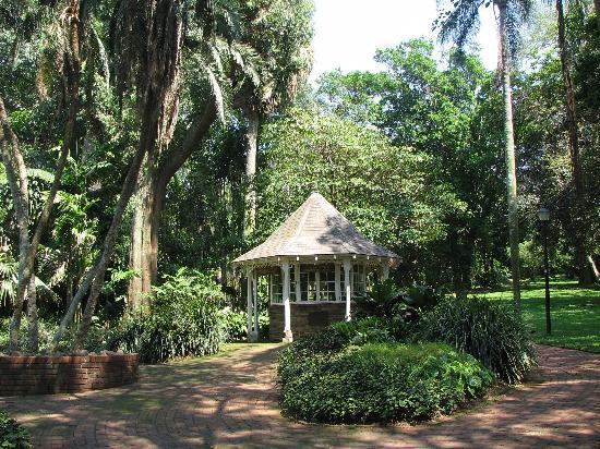 Durban Botanical Gardens Picture Of Durban Botanic