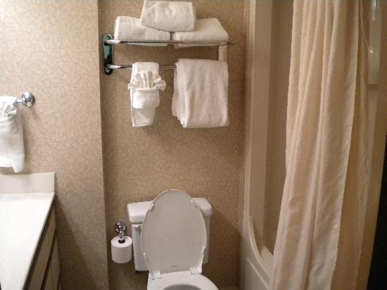 TownePlace Suites Atlanta Buckhead : clean bathroom