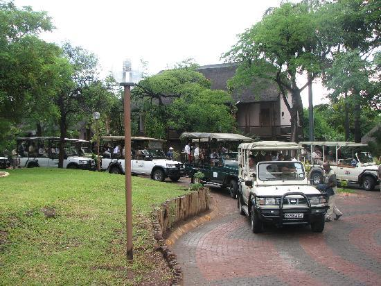 Chobe National Park, Botswana: Safari Jeeps from Mowana Lodge