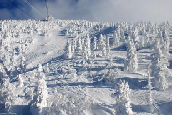 Aomori, Japonia: ロープウェイからの樹氷の眺め