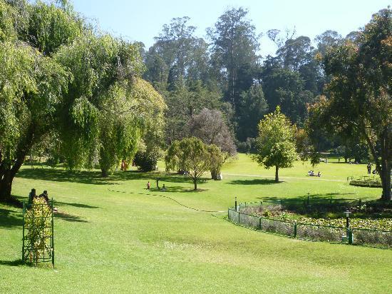 Hotel Welbeck Residency: Ooty botanical garden