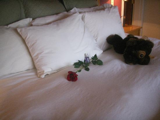 Pine Ridge Inn: Nice touch, rose stem and bear( You can buy the bear, we don't)