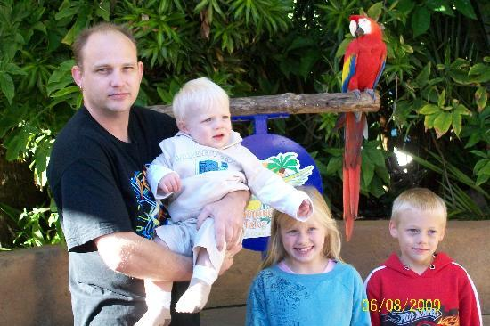 Ashmore Palms Holiday Village: my family with one of the macaws you can have your photo taken with