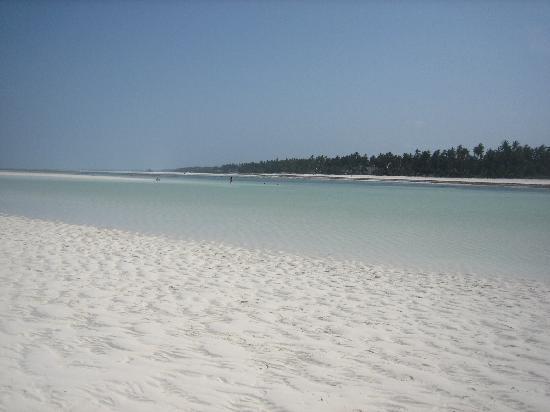 Neptune Pwani Beach Resort & Spa: bassa marea _ dalla lingua di sabbia emersa al largo