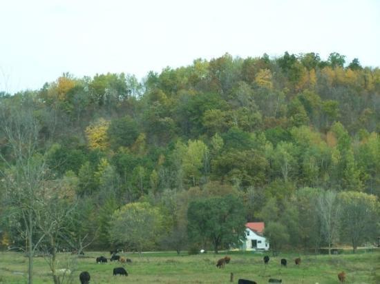 La Crosse, WI: Not the best colors, just nice landscapes.