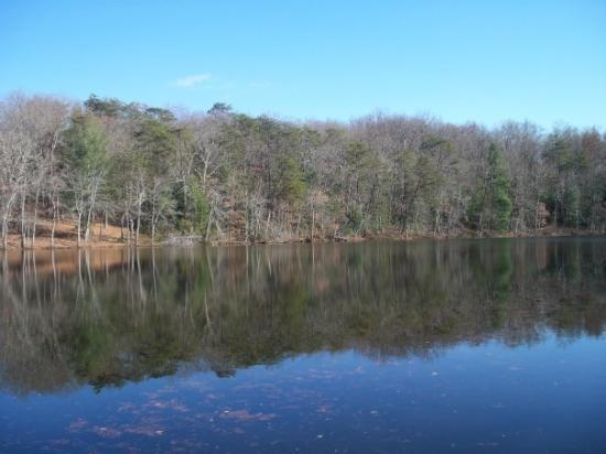 Foto de Cumberland Mountain State Park