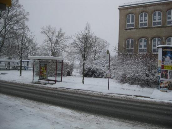 Zwickau, Germany: the bus stop across the street from the store