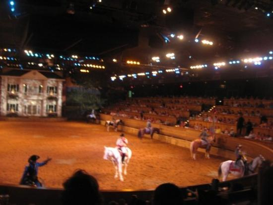 Dixie Stampede In Pigeon Forge Tn Picture Of Dixie