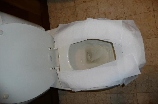 Hilton Bora Bora Nui Resort & Spa: WE HAD TO PROTECT US FROM THE DISGUSTING TOILET SEAT !!!