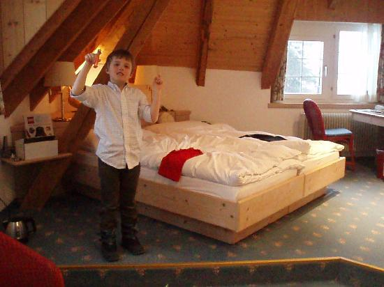 Hotel Villa Post : nice corner room with exposed beams