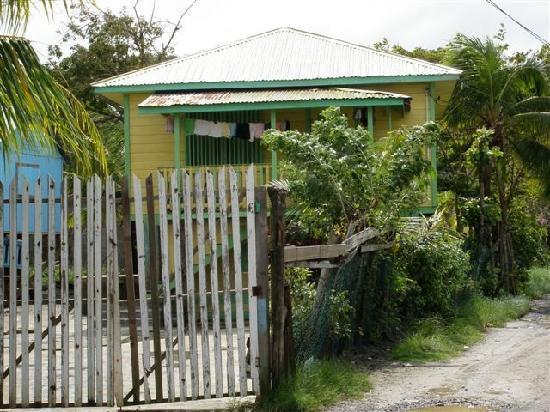 Mayan Princess Beach & Dive Resort: Typical village home