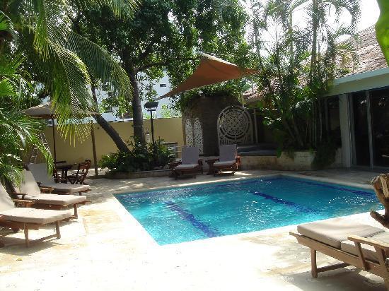 Santorini Hotel Boutique Santa Marta: The swimming pool