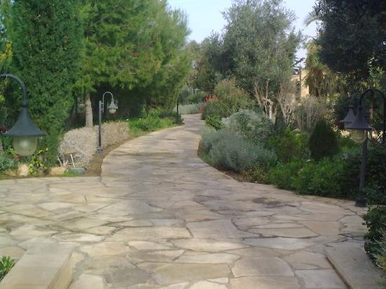 Elysium Hotel: lovely pathways meandering around