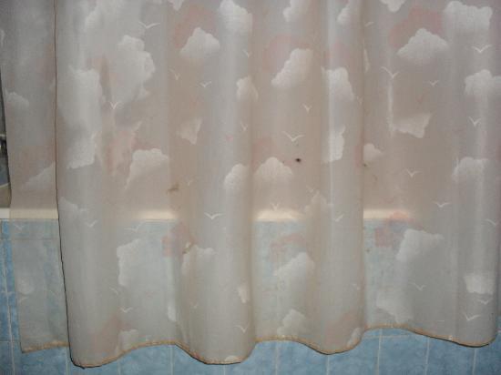 Le Tafilalet: Le rideau de douche moisi avec eau tiede et au goutte à goutte
