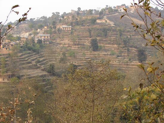 Nagarkot Cottage: View from Nagarkot