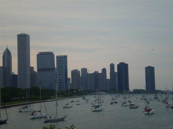 Lake Michigan : Yachts and skyline.