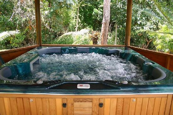 Mountain View Lodge: Jacuzzipool