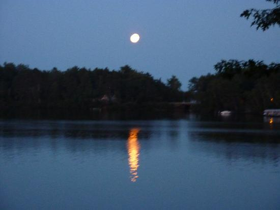 AmericInn Minocqua: Surrounded by absolute serenity!