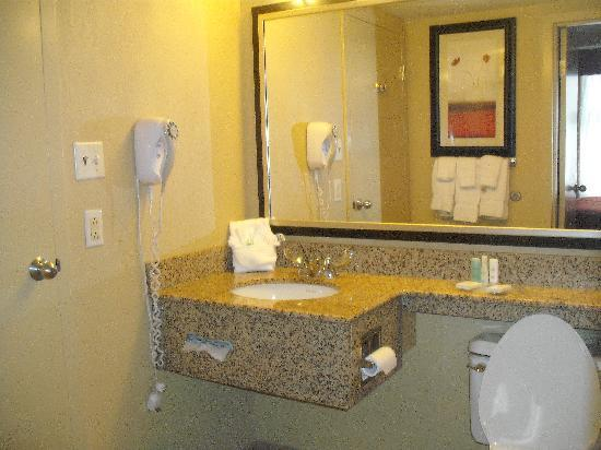 Comfort Suites Downtown Buffalo: Bathroom