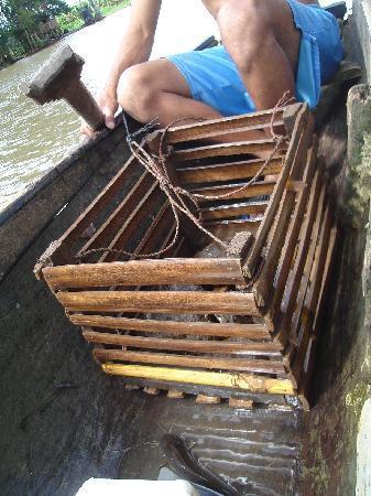 San Carlos, Nicaragua: Ingeniosa trampa para camarones de río