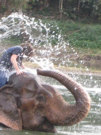Thongbay Guesthouse: Elephant rider .... aaaah