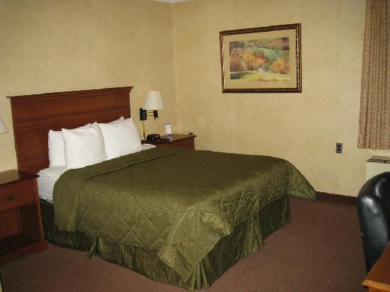 Comfort Inn Trolley Square : View of bed
