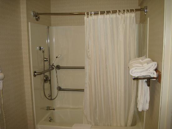 Comfort Inn Trolley Square : Bathtub/shower