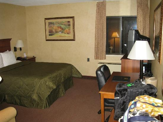 Comfort Inn Trolley Square: Hotel room