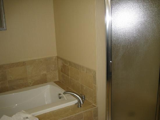 Hampton Inn Rutland/Killington : Jacuzzi/Stand up shower