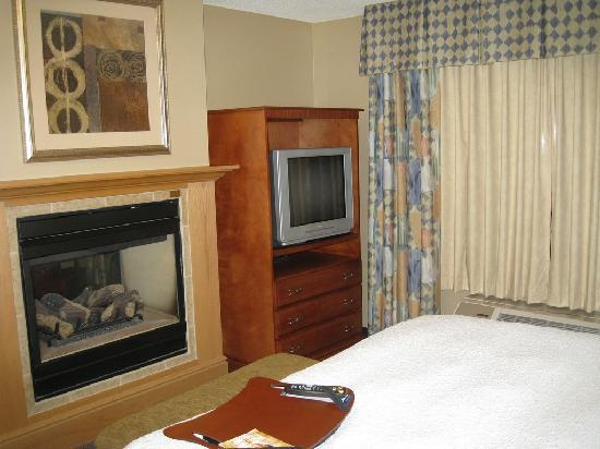 Hampton Inn Rutland/Killington : Fireplace from bedroom