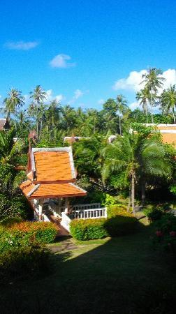 Banburee Resort & Spa: vue de la chambre