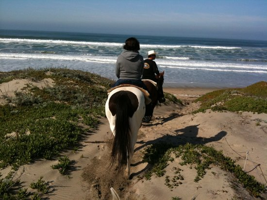 Monterey Bay Equestrian Center : Riding on the trail leading to the beach