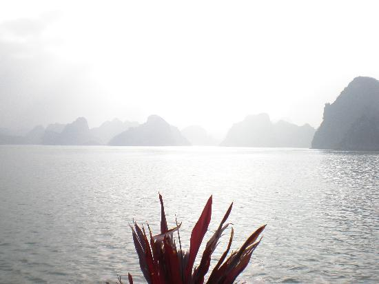 Tuan Chau Holiday Villa Halong Bay Photo