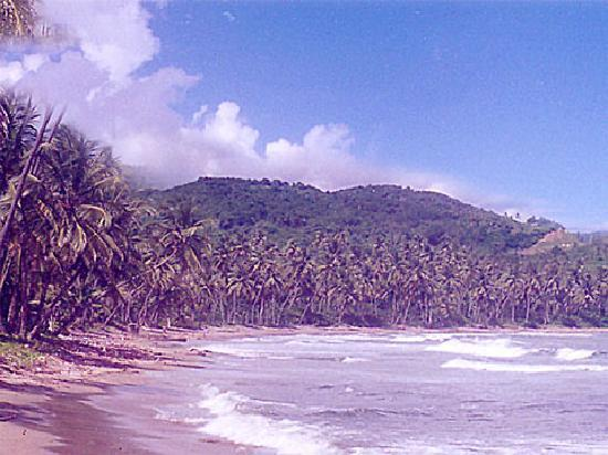 Horizons Tobago Apartments: walking distance - just 2 minutes on foot