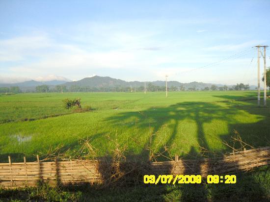 surrounding farmland at Jun Village
