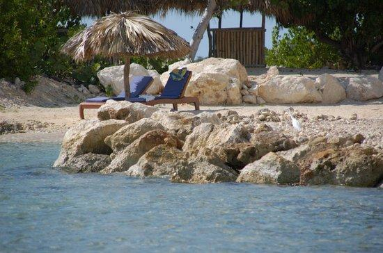 Coral Cove Resort: Along the Cove's Southwest Beach