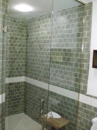 Hotel Indigo Asheville Downtown: the best shower!