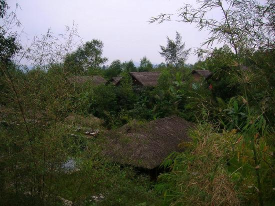 Pilgrimage Village : Vista